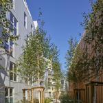 Birch alleyway, Image Courtesy © Stéphane Chalmeau