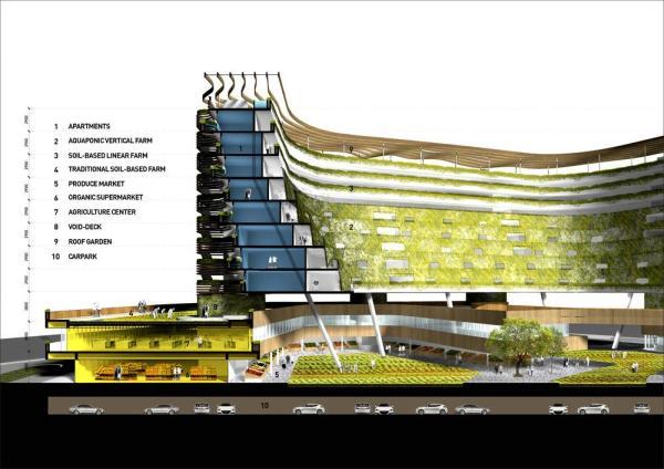 Section, Image Courtesy © SPARK architects