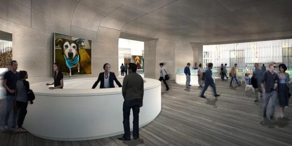Image Courtesy © ANX/Aaron Neubert Architects