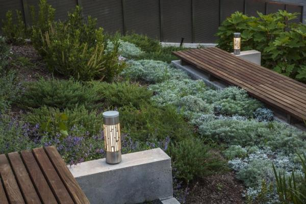 Detail view of the planting and bollard lights, Image Courtesy © Steven Evans / © PLANT Architect Inc.