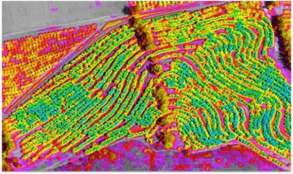 DigitalGlobe, WorldView-3 image