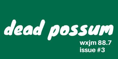 dead possum (1)