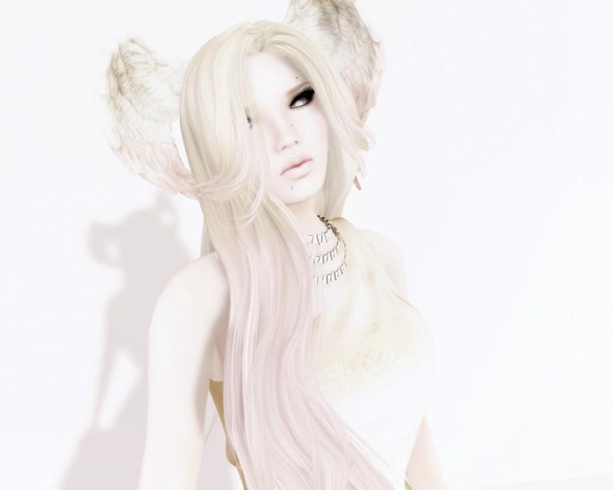 Pink Dove