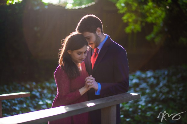 lucia-mark-berkeley-rose-garden-engagement-1
