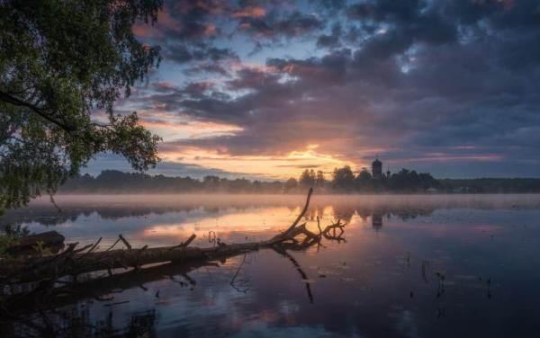 Утро в Введенском