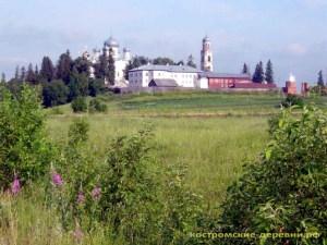 Вид на Авраамиево-Городецкий монастырь с востока