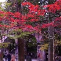 南禅寺水路閣の紅葉