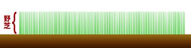 grass_natural