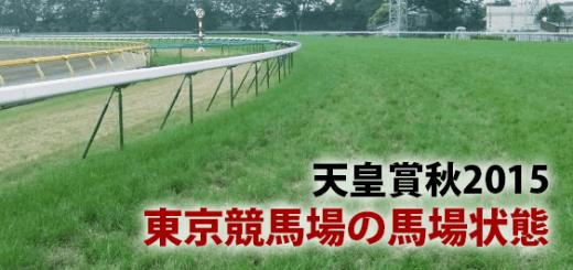 天皇賞秋2015東京競馬場の馬場状態