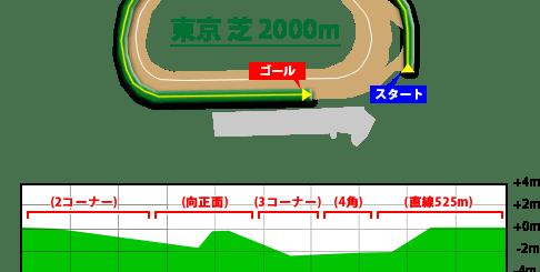 東京競馬場,芝2000m
