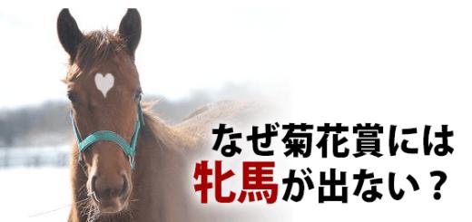 なぜ菊花賞には牝馬が出ない?