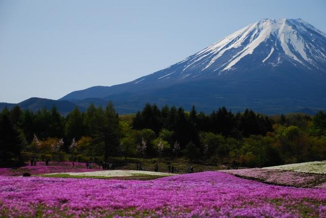 富士山 山開き 2015
