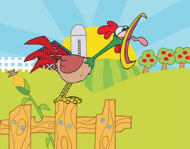 gallo cantor.