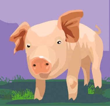 cerdo y sus chillidos autenticos, bufon tramposo.