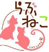 【札幌】 中央区大通りの猫カフェなら『らぶねこ』~料金・特徴は?