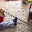 赤ちゃんとペット遊んで可愛い萌キュン動画
