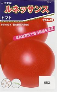 Renaissance-tomato1