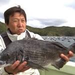 [カカリ・筏釣り] 黒鯛(チヌ)釣りするならこの動画 [見るだけで爆釣]