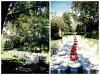 不思議の国のアリスっぽい結婚式が素敵な画像80