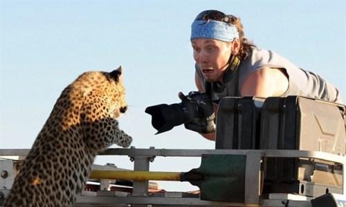 カメラマンと仲良くなってしまった動物達12