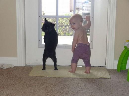赤ちゃんと仲良し11