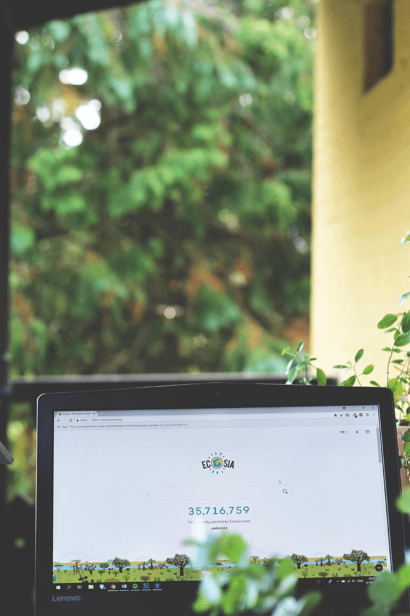 Den miljøvenlige søgemaskine - Plant træer når du søger på nettet