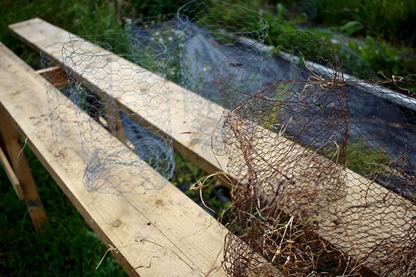 Tre olika typer av korgar som ska skydda trädens rotsystem: En av förzinkat sexkantsnät med botten, en utan botten och en av vanligt stål som rostar inom en eller två säsonger.