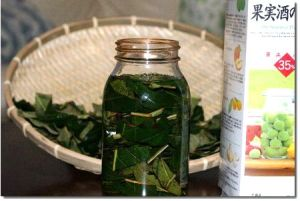 びわの葉茶