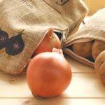 夏場の玉ねぎの保存方法や賞味期限は?
