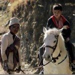 Laaz and Kalo Pothi to be featured in Busan Film Festival