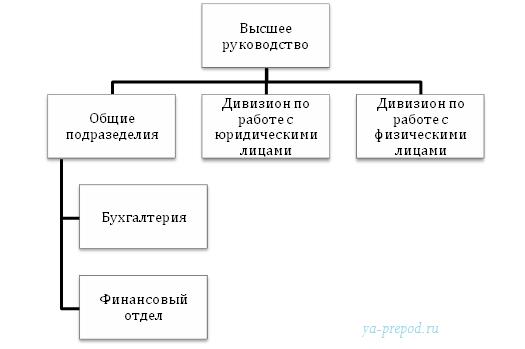 Дивизиональная структура потребительская пример