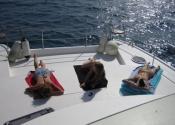 alquiler-catamaranes-motor-c7