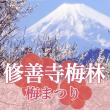 syuzenji_ume_fes_eyecatch