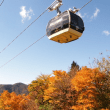 hakone_autumn_leaves_eyecatch