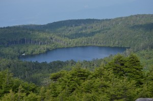 白駒の池(高見石から)