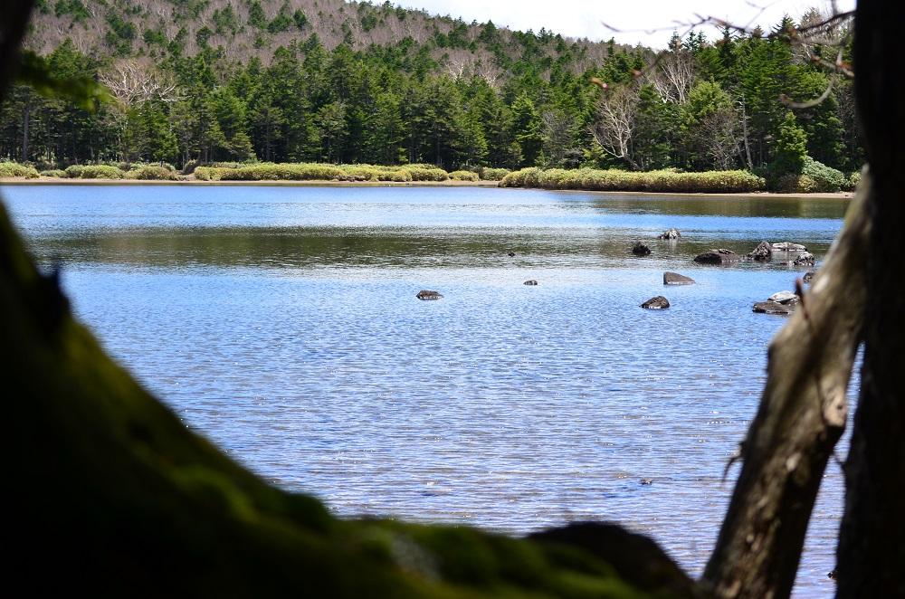 山上湖の雨池