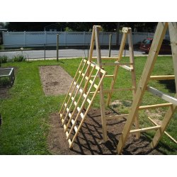 Small Crop Of Trellis For Cucumbers