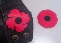 Save The Poppy, For the Veterans