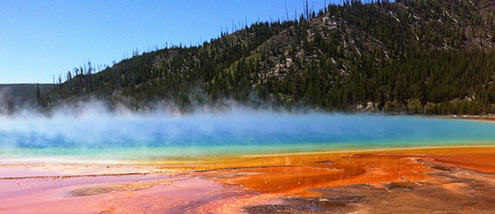 Yellowstone-Tours-Update