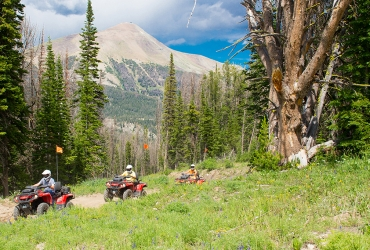 Guided ATV tours to Pioneer and Eglise Mountains offer panoramic vistas at the summit.