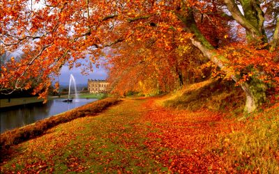 Autumn Wallpapers High Quality | Download Free