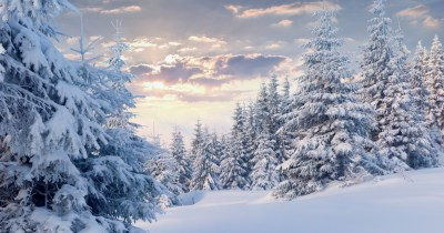 4K Snow Wallpapers High Quality | Download Free