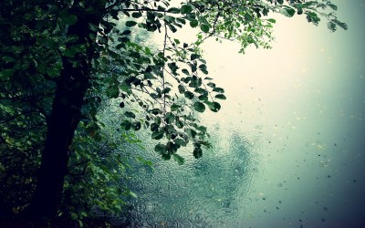 Rain Wallpapers High Quality | Download Free