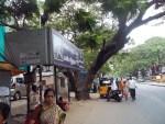 bus-stop-north-usman-road