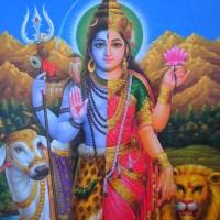 Das Shiva-Shakti Prinzip - Balance & Gleichberechtigung des männlichen und weiblichen Prinzips