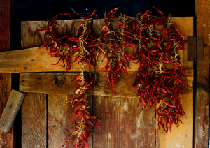 Suleymans_Garden_Chillies