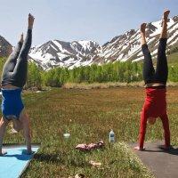 Writing your Yoga Bio: A Tutorial