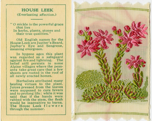 Kensitas Silk Flowers Botanical Vintage Cigarette Cards