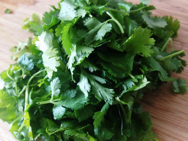Large Of Can You Freeze Cilantro