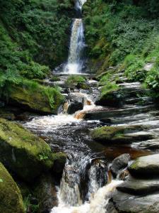 Explore Xelha's Unspoiled Wilderness